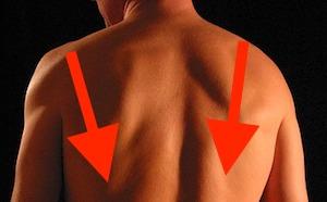 肩幅を狭く見せる肩の使い方