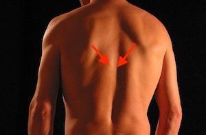 女性らしく見える肩甲骨の寄せ方