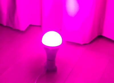 ピンク色のLED電球